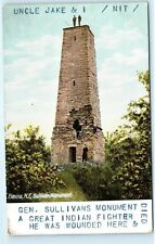 Sullivan Monument General Sullivans Great Indian Fighter Elmira NY Postcard B11