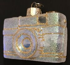 OLD WORLD CHRISTMAS GLASS CAMERA ORNAMENT PAINTED SCENE INSIDE ART - PERFECT