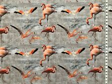 "Jersey "" Tim "" Flamingos - Digitaldruck - Swafing - Kinderstoff"