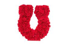 18IN Rose Horseshoe Centerpiece Display Valentines Day Kentucky Derby Decoration