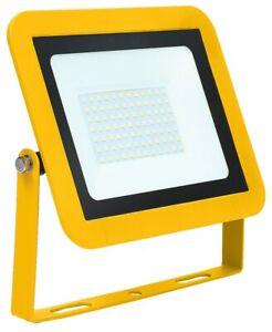 110V 50W AC LED SITE FLOODLIGHT-IP65-6000K-YELLOW-RED ARROW