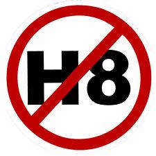 NO H8 (No Hate) - Small Bumper Sticker / Decal