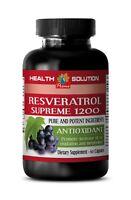 resveratrol capsules - RESVERATROL SUPREME 1200mg - fat burning vitamins 1B