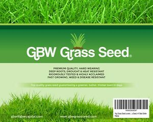 1 kg Grass Seed Covers 55 sqm - Premium Quality Seed - Fast Growing - Effective