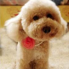 Chiens Colliers perles fleurs mignon pour animaux brillant Paillettes populaire