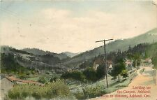 c1907 Hand-Colored Postcard Up the Canyon, Ashland Butte Ashland Or Jackson Co.
