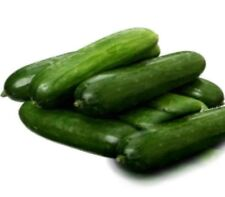 Cucumber Lebanese 50 seeds heirloom Variety vegetable garden fresh heritage seed