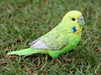 NEW Budgie Budgerigar with Iron Foot Figurine - Life Like Statue Home / Garden