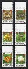 ALDERNEY 2004 FUNGI SET OF 6 UNMOUNTED MINT, MNH.