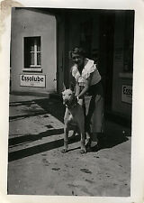 PHOTO ANCIENNE - VINTAGE SNAPSHOT - ANIMAL CHIEN PUBLICITÉ ESSOLUBE - DOG ADVERT