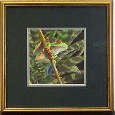Red Eyed Leaf Frog by Van Kempin conservation framed s/n giclee print