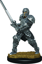 W3 Human Male Fighter 93017 Icons of Realms Premium Figures D&D SHIPS 8/19