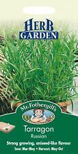 Mr Fothergills - Pictorial Packet - Herb - Russian Tarragon - 350 Seeds