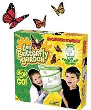 Live Butterfly Garden Painted Lady Habitat by Insect Lore