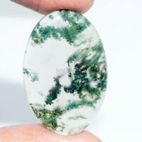 Cts. 26.45 Natural Moss Agate Cab Oval Exclusive Cabochon Loose Gemstones