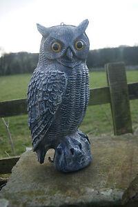 LIFESIZE 41cm LARGE REALISTIC OWL DECOY small bird pigeon scarer, crow decoying