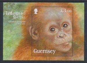 Guernsey - 2014, Sumatran Orangutan sheet - MNH - SG MS1503