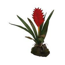 Lucky Reptile - Broméliacées rouge petit - plante Plante en plastique Décoration