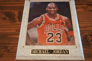 MICHAEL JORDAN 8x10 Framed AUTO (Autograph) w/COA - Bulls #23 Classic Photo