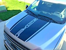 Ford F150 Custom Hood Decal 2015, 2016, 2017, 2018, 2019, 2020 - REALLY NICE!