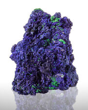 "2.7"" UltramarineBlue AZURITE Crystals w/Green Malachite Mecissi Morocco for sale"