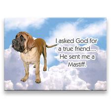 Mastiff True Friend From God Fridge Magnet No 1 Dog