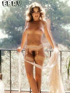Art photographs nudes 8 x 6 glossy hd