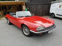 Jaguar XJS Convertible, low miles of 78500