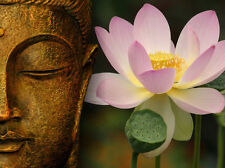 BUDDHA & LOTUS FLOWER  home decor * QUALITY CANVAS  PRINT
