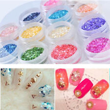 12X Set Crushed Shell Chips Glitter Powder Dust Acrylic Tips Nail Art Decoration
