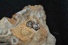LADIES 10KT GOLD/DIAMOND(.13 TCW)/CLUSTER EARRING'S(2.1 GRAMS)..
