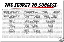 The Secret to Success TRY - School Motivational  POSTER