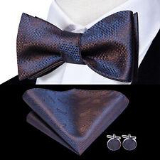 Blue Brown Paisley Self Bow Tie Classic Mens Silk Necktie Bowtie Set Wedding USA