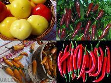 Ungarische Paprika Paket aus 4 Sorten - Schärf - 35+ Samen SCHäRFE SPEZIALITäTEN