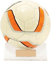 Soccer Football, Basketball,Volleyball Display Holder Trophy Stand Engraved FREE