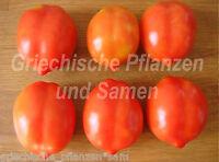 🔥 🍅Tropfenförmige von Linosa Tomate Tomaten alte Sorte 10 frische Samen Balkon