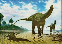 DINOSAUR ART Sauropod Demandasaurus darwini NEW Modern Russian Postcard