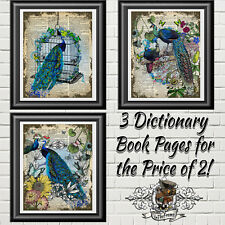 Beautiful Peacocks on Real Antique Dictionary Book Pages, Wall Decor Picture