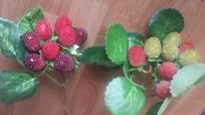 2 Artificial Fruit Rasberry picks .9 berries on each 27cm stem.autumn christmas