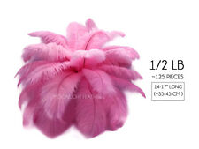 """1/2 Lb 14-17"""" Candy Pink Ostrich Large Wholesale Feathers Centerpiece Gatsby"""