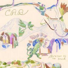 CHRIS BROTHERHOOD ROBINSON - BAREFOOT IN THE HEAD   CD NEW!