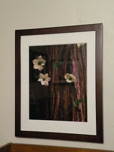 """Dogwood"" Rodney Lough Jr Wilderness Collection - Large Landscape Photography"