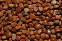 1LB Goldstone Tumbled Gemstones Wholesale Bulk TRGR/7M13