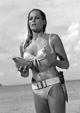 Movie PHOTO 8.25x11.75 Ursula Andress in 1962 James Bond 007 Dr. No #04