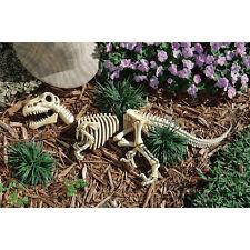 Raptor Dinosaur Fossil Skull Skeleton Bones Statue Halloween Props Gothic Decor