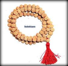 Rare 7 Mukhi Rudraksha Mala / Seven Face Rudraksh Mala / Mahalaxmi Mala