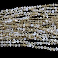 "8mm Heart Sea Shell Beads Loose Gemstone Beads Jewelry Making Strand 15"""