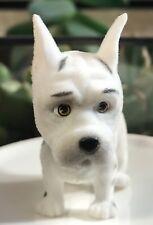 Puppy in My Pocket  Series 5: Great Dane, Charlie