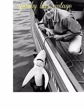 Celebrity Photo Black & White Vtg Peter Graves With Blue Shark