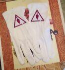 Masonic Royal & Select Masters Gloves
